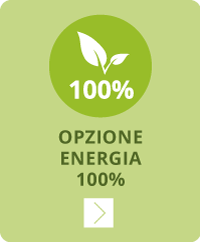 opzione_100_energia